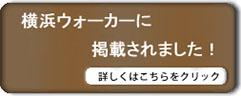 横浜ウォーカーに掲載されました!